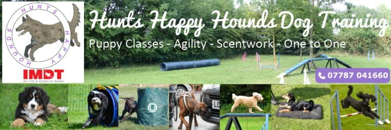 Hunts Happy Hounds home page banner